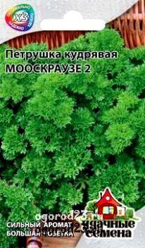 выращивание петрушки 10