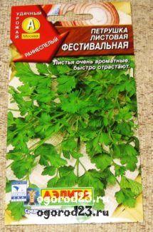 выращивание петрушки 8