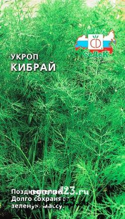 Выращивание укропа Кибрай