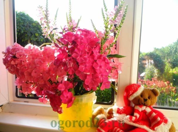 цветы для букета названия и фото 15