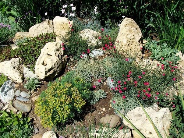 дизайн садового участка своими руками фотогалерея 14