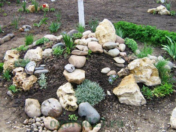дизайн садового участка своими руками фотогалерея 13