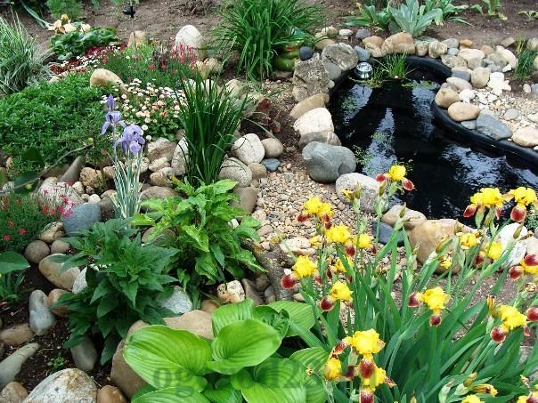 Оформление садового участка (50 фото особенности) 10