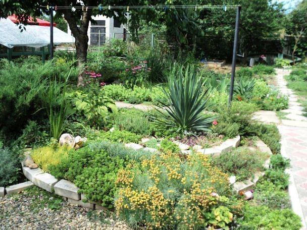 дизайн садового участка своими руками фотогалерея 16