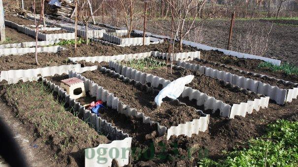 дизайн садового участка своими руками фотогалерея 33