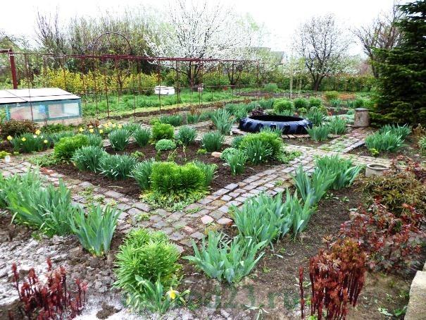 дизайн садового участка своими руками фотогалерея 11