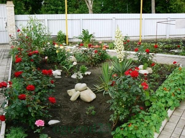 дизайн садового участка своими руками фотогалерея 18