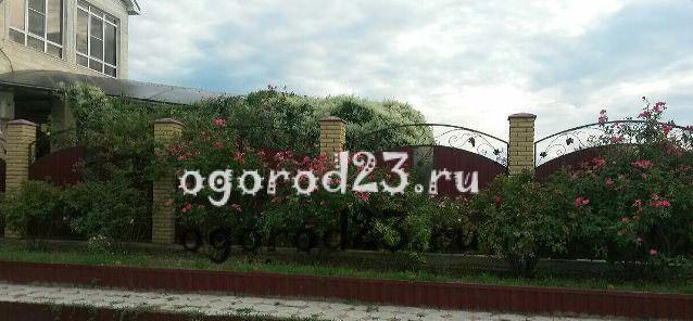 Дизайн садового участка своими руками – фотогалерея 205