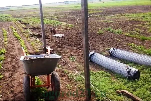 забор из фото сетки