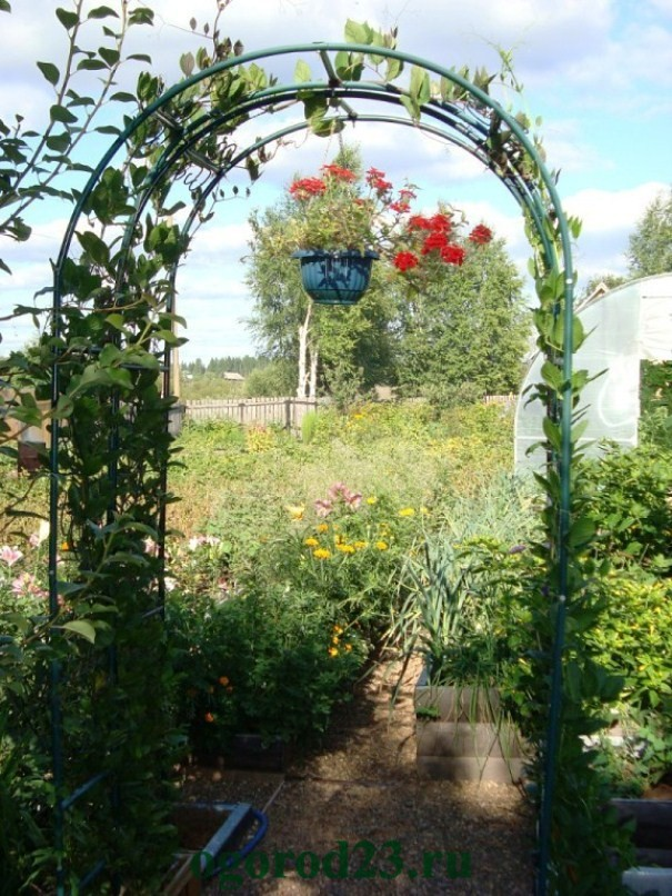 арки для цветов на даче 1