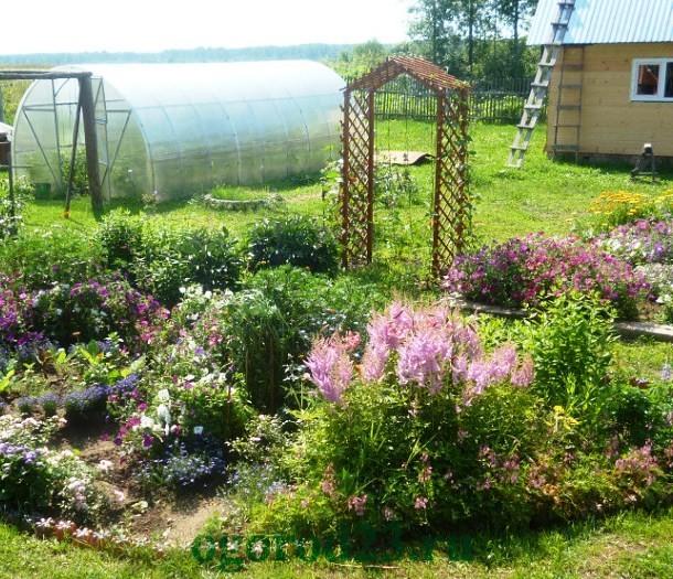 арки для цветов на даче 3