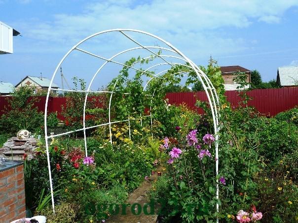 арки для цветов на даче 7