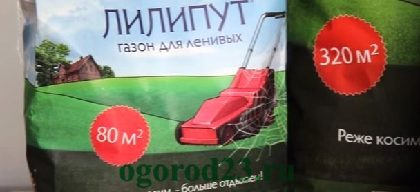 Как сделать газон на даче своими руками 3
