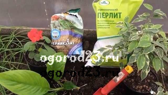 перлит для растений 8