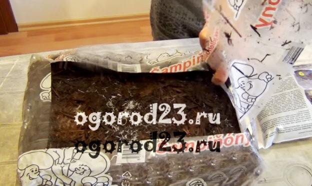 Выращивание шампиньонов в домашних условиях для новичков 12