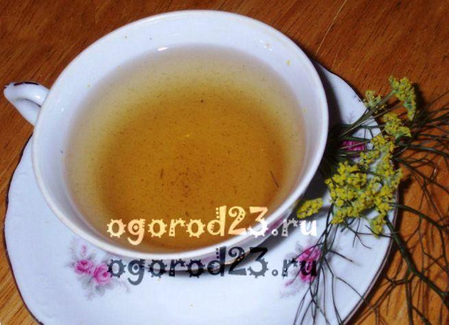 Семена укропа, лечебные свойства и противопоказания 4