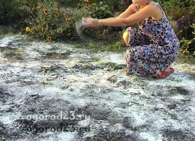 Фосфорные удобрения 9